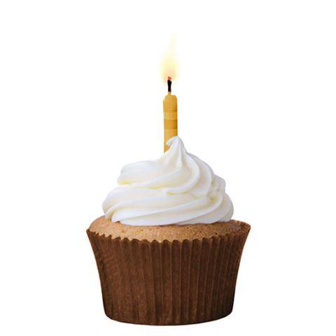 forminha-cupcake-marrom-n0